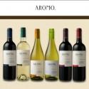 Degustačná sada vín z Čile