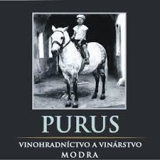 logo Villa Modur Purus